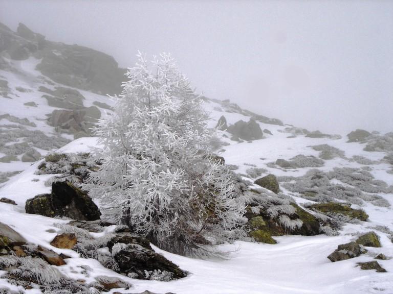 Inverno al rifugio